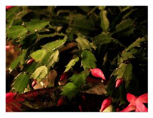 CHRISTMAS20CACTUS20WATER20COLOR20copy