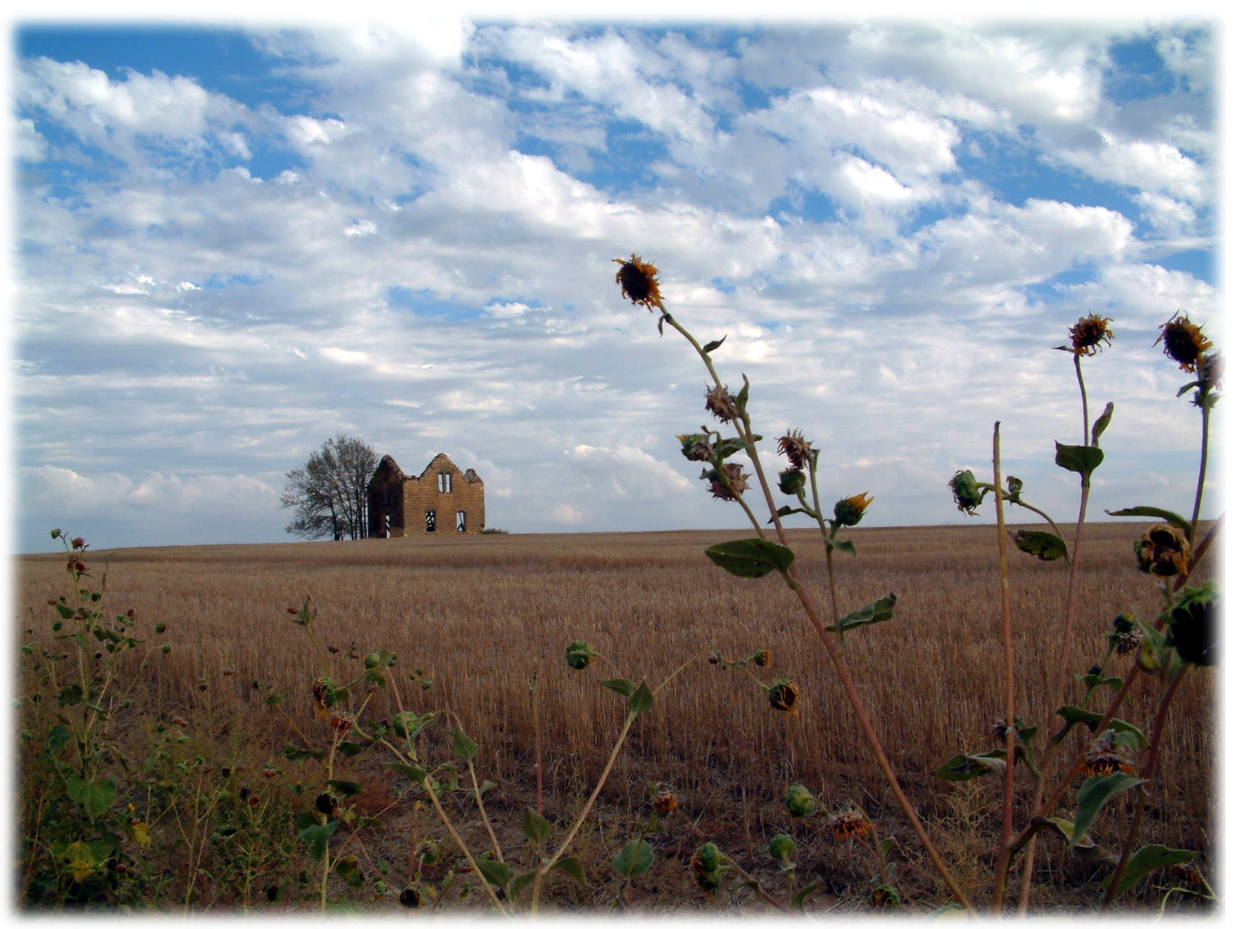 KANSAS-MEMORIES-PAST-website-jpg